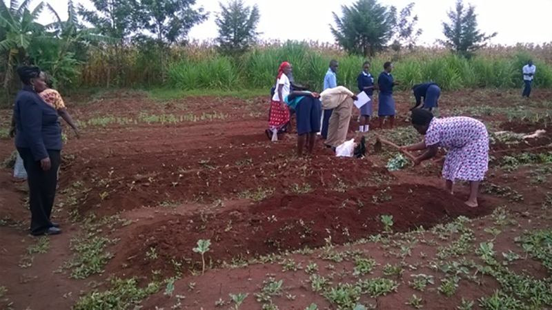 A group of Kenyan people working in the garden
